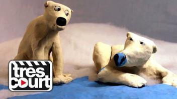 Cache-cache dans la neige - Polar Where ?