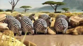 ROLLIN' SAFARI - four official Trailers ITFS 2013 and fmx 2013